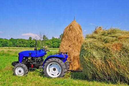 Hay preparation Stock Photo - 9856891