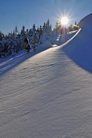 hillside: Morning on a hillside Stock Photo