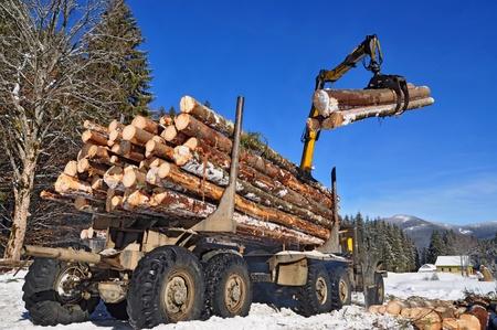 Wood preparation Stock Photo - 12435624
