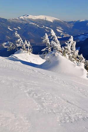 hillside: Winter hillside