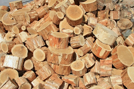 forest products: Fire wood close up