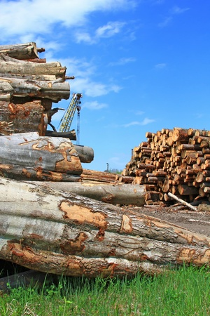 Wood preparation photo