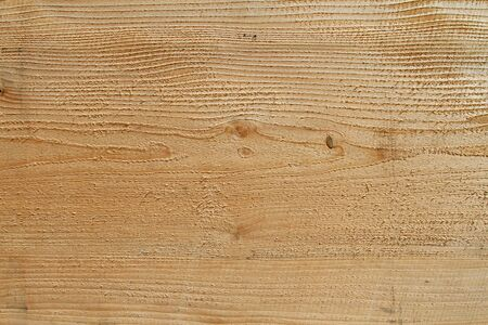 forest products: Longitudinal cut of a trunk of a fur-tree