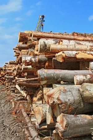 Wood preparation Stock Photo - 15567228