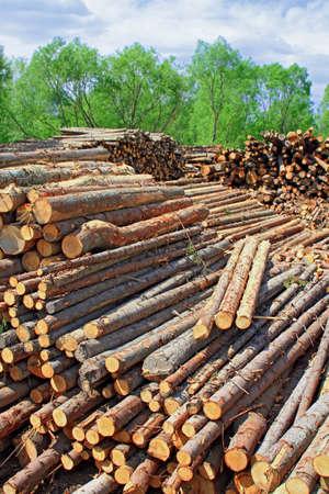 Wood preparation Stock Photo - 16427781