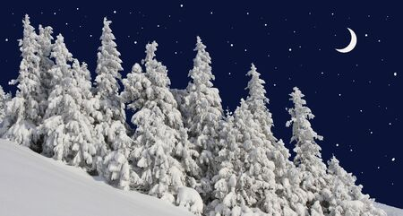 Firs under snow against the night sky with the moon   Stock Photo - 17340803