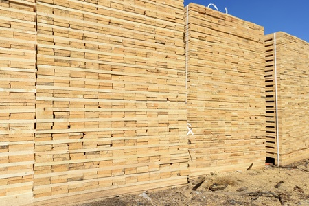 primary product: Edging board in stacks