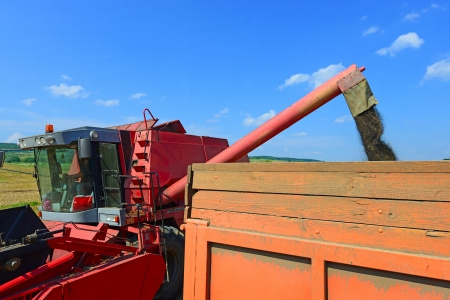 tanker type: Overloading of rape seed with a combine grain tank car