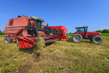 agricultural tenure: Overloading of rape seed with a combine grain tank car