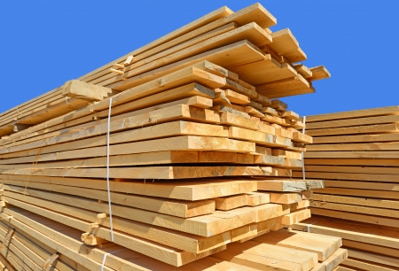 tree felling: Edging board in stacks