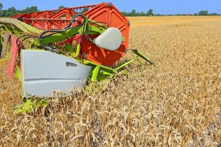 tanker type: Maize grain harvester