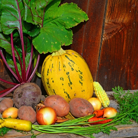 Vegetables in the autumn still life  photo
