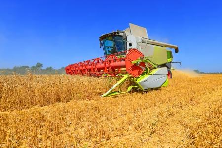 combine harvester: Grain harvesting combine