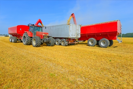 agricultural tenure:   Overloading of grain bins in a car tractor