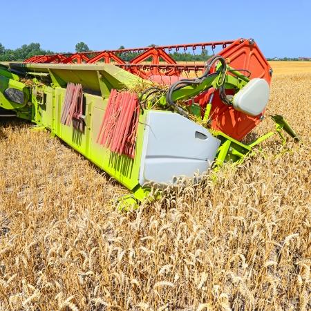 cosechadora: El maíz cosechadora de cereales