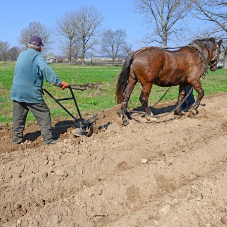 Fallowing of a spring field by a manual plow on horse-drawn Stock Photo - 25158707