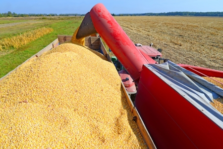 farm implement: Overloading of maize from the hopper to the tractor vehicle