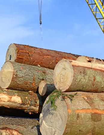 workable: Wood preparation