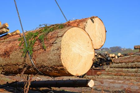Wood preparation Stock Photo - 26042687