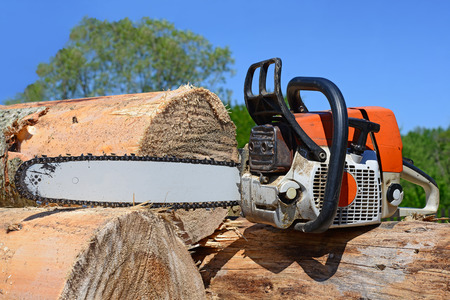 Chain saw on logs photo