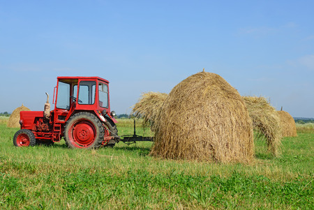 Hay harvesting photo