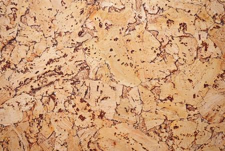 m�dula: Fragmento del panel de revestimiento de madera de un �rbol de m�dula