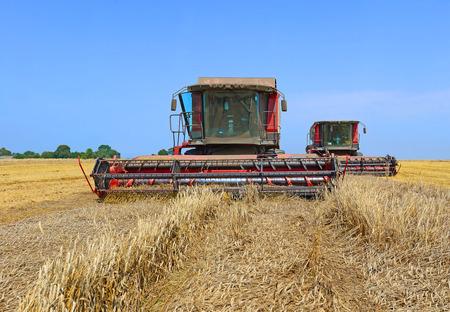 Grain harvesting combine photo