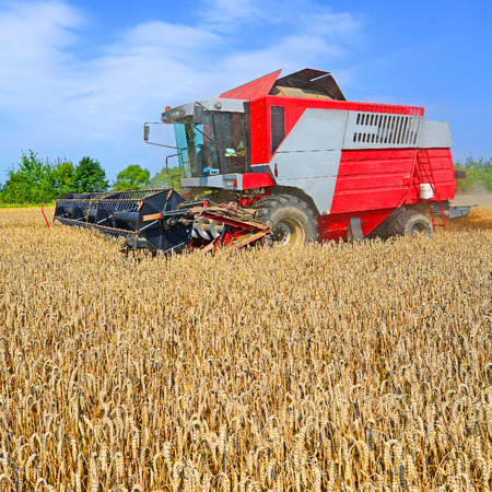 Grain harvesting combine photo