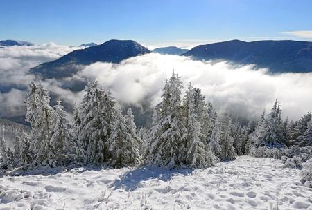 hillside: Winter on a hillside. Stock Photo