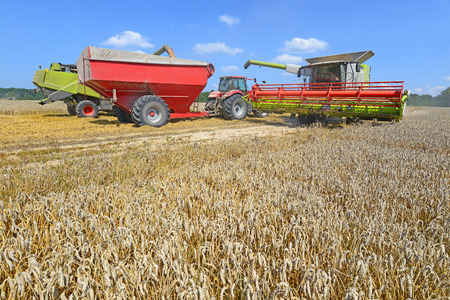tanker type: Cleaning grain harvesters