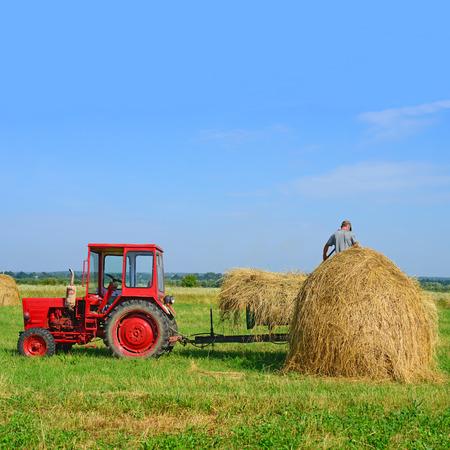 haymaking: Hay preparation