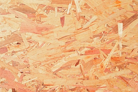 waste products: Fragment of a plate from the pressed waste of wood