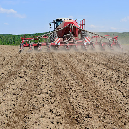 seed drill: Planting corn trailed planter in the field