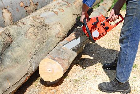 Voorbereiding van brandhout