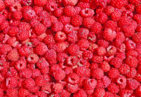 truck crops: Raspberries in the background photo