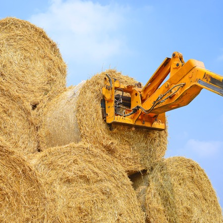 telescopic: Telescopic handler for storing bales of straw on the ground storage