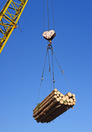 forest products: Wood preparation