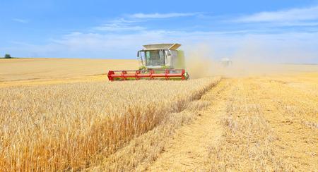 combine: Grain harvesting combine