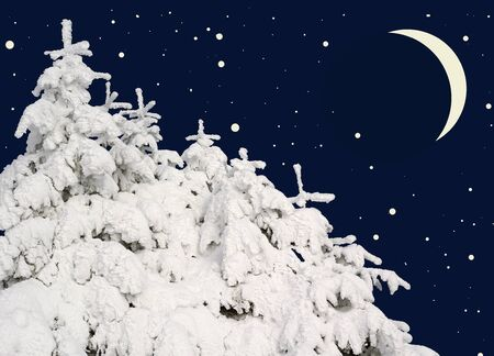 acerose leaf: Firs under snow against the night sky with the moon.