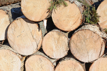 primary product: Wood preparation. Stock Photo