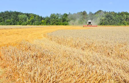 agriculture machinery: Grain harvesting combine