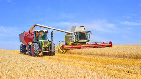 agricultural application tractor: Grain harvesting combine