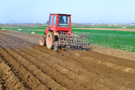 agricultural tenure: At planting potatoes Stock Photo