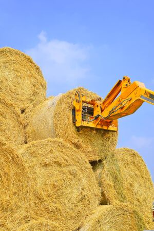 unloading: Unloading bales of straw with a car on the ground storage Stock Photo