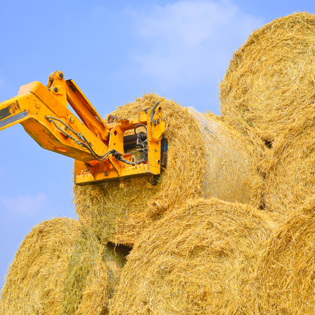 handler: Telescopic handler for storing bales of straw on the ground storage