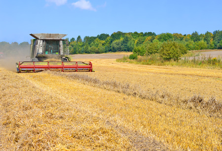agricultural tenure: Modern  combine harvesting grain in the field