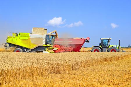 Overloading grain harvester into the grain tank of the tractor trailer