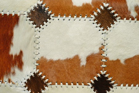 cow skin: Detail from cow skin rug