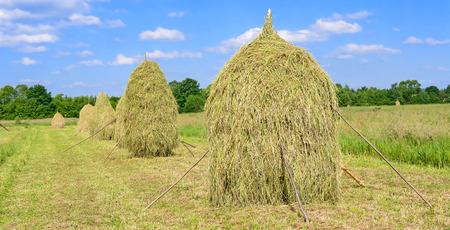 hayrick: Hay in stacks Stock Photo