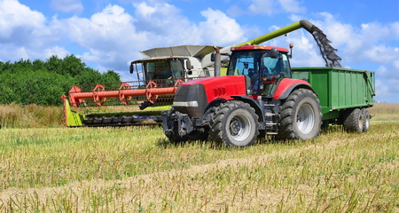 agricultural tenure: Modern combine  harvesting rape field